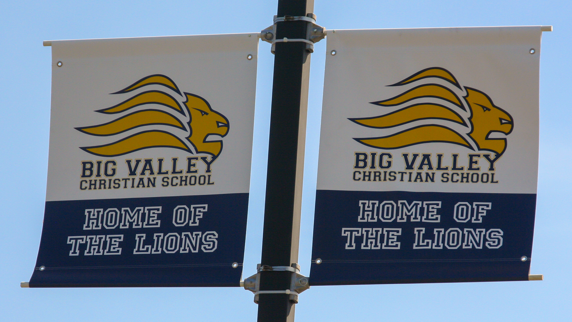 admissions-home-of-the-lions